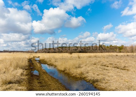 nice sprind day on meadow with dirt road - stock photo
