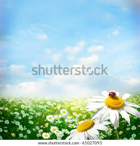 nice summer day - stock photo