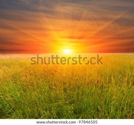 Nice sunset over field in steppe - stock photo