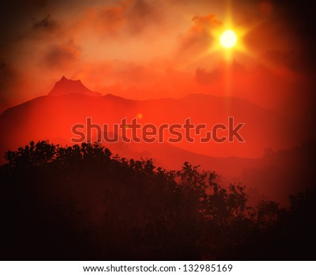 Nice sunset over forested  land - stock photo