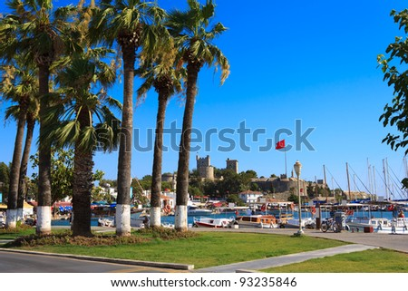 Nice view of the historic Bodrum Castle with palm trees - stock photo