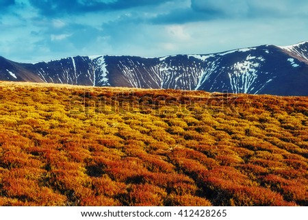 Nice view of the snow peaks which glowing by sunlight. Dramatic and picturesque scene. Location place Carpathian, Ukraine, Europe. Beauty world. Retro and vintage style. Instagram toning effect. - stock photo