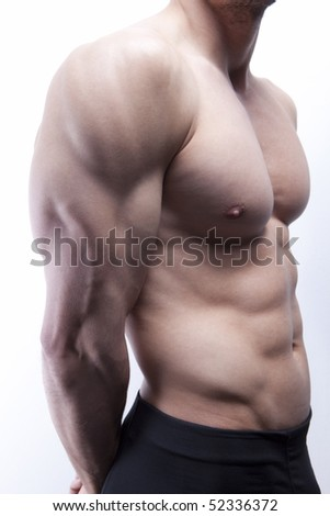 Nice well trained torso, great abs, six packs and chests, sexy body - stock photo