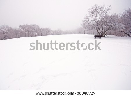 Nice winter photo with bench - stock photo