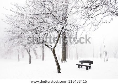 Nice winter scene with bench - stock photo