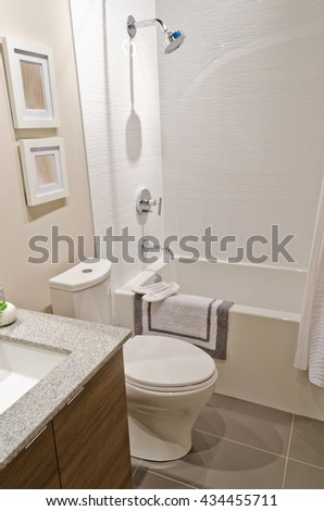 Nicely decorated modern washroom, bathroom with the toilet sit and sink. Interior design.