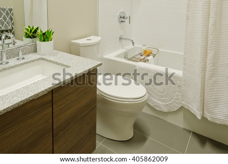 Nicely decorated modern washroom, bathroom with the toilet sit, sink, some plants in the vase on the shelf. Interior design.