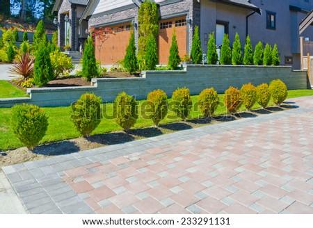 Nicely trimmed bushes along paved driveway. Landscape design. - stock photo