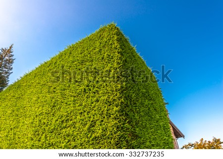 Nicely trimmed bushes, green fence in front of the house, front yard. Landscape design. - stock photo