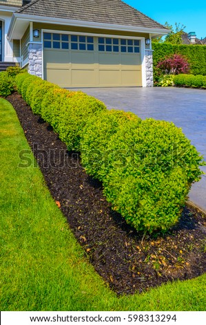 Nicely Trimmed Bushes Front House Along Stock Photo