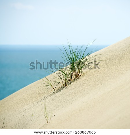 Nida. Sand Dunes, Curonian Spit and Curonian Lagoon, Nida, Klaipeda, Lithuania. Baltic Dunes. Unesco Heritage. - stock photo
