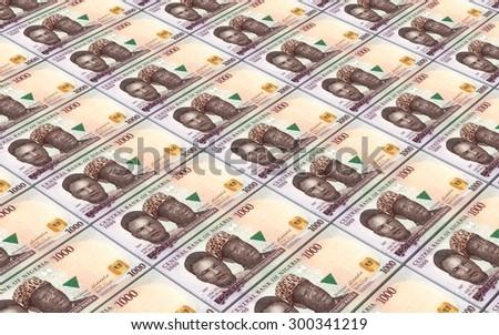 Nigerian nairas bills stacks background. - stock photo