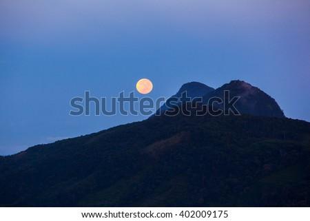 Night and full moon in Sniharaja rainforest. Sri Lanka - stock photo