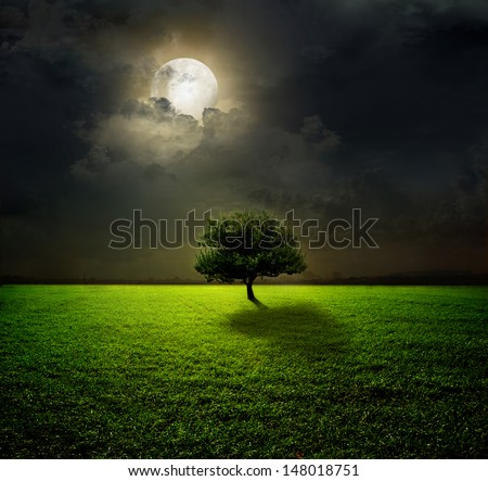 Night and the moon on a green field - stock photo