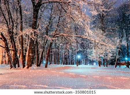 Night city winter park during the snowfall covered with frost and snow  - stock photo