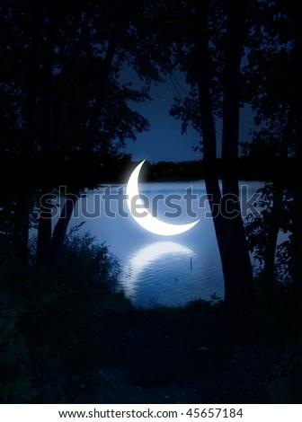 Night fairy tale - stock photo
