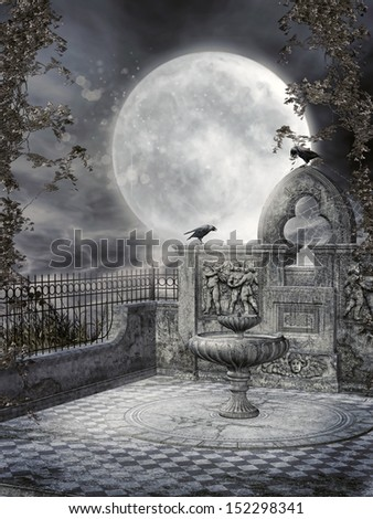 Night garden with a fountain, ravens and vines