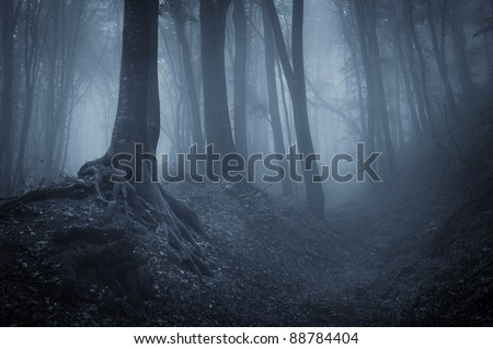 night in a dark forest with fog and black trees - stock photo