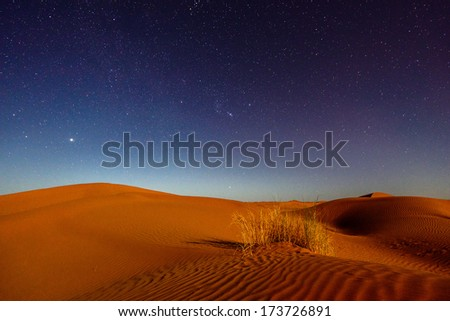 Night in the desert - stock photo