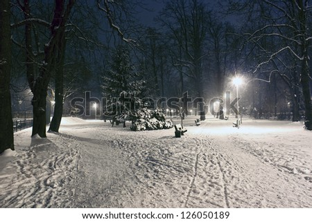 Night landscape in winter city - stock photo