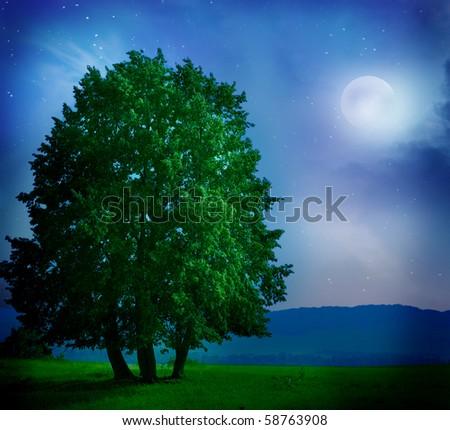 night moon and tree - stock photo