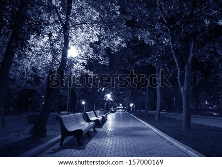Night Park Wood Benches and Alley Late Autumn toned in blue - stock photo