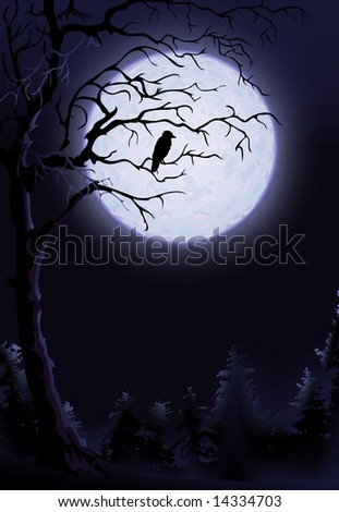 Night raven on a tree (other landscapes are in my gallery) - stock photo