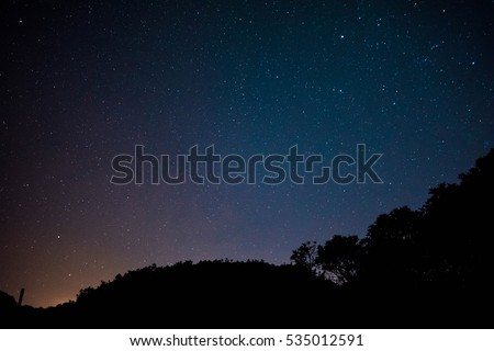 Night shot of a forest with star field behind.