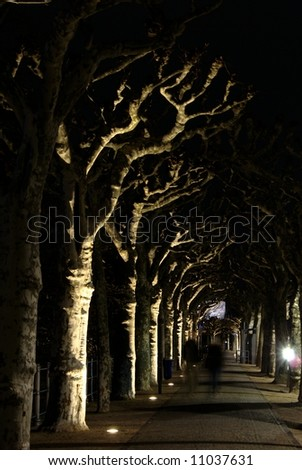 Night shot of plane-tree alley with blurred people - stock photo
