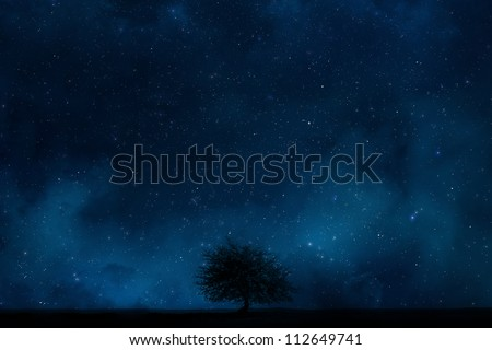 Night sky with Lonely tree - stock photo