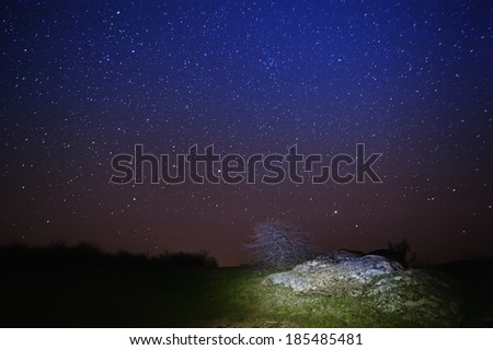 Night sky with lot of shiny stars, rock and tree are at front - stock photo
