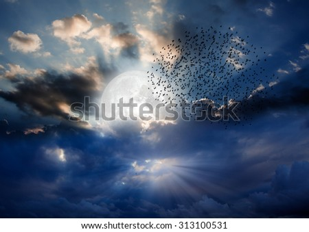 """night sky with moon and clouds """"Elements of this image furnished by NASA """" - stock photo"""