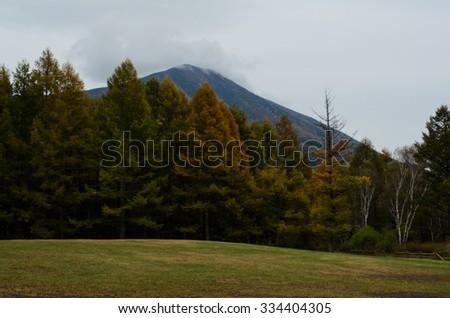 Nikko in Autumn - stock photo