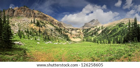 Niles Meadows - Amphitheater, British Columbia, Canada  10 Miles West of Lake Louise Approx 2 hour Hike, 1-1/4 hike pass Sherbrooke Lake Mount Niles (c) over looks the Head Waters for Takakkaw Falls - stock photo