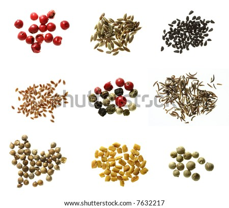 nine different kinds of spices super macro shots - red peppercorns, dill seeds, onion seeds, psylluim seeds, mixed peppercorns, black cumin seeds, white coriander, fenugreek, green peppercorns - stock photo
