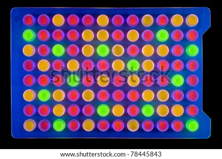 Ninety-six well plate containing multi-coloured fluorescing samples. Isolated on black [with clipping path]. - stock photo