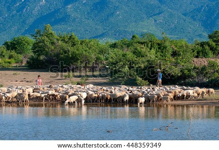 Ninh Thuan, Vietnam, June 23, 2016 Farmers, rural provinces of Ninh Thuan, Vietnam, raising goats