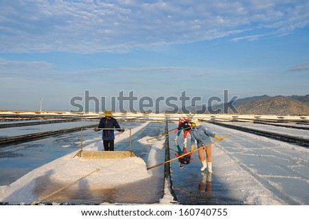 NINHTHUAN, VIETNAM, MAY 03: Three farmers work in salt field on May 03, 2013 in Ninhthuan, Vietnam. Ninhthuan is central province in Vietnam