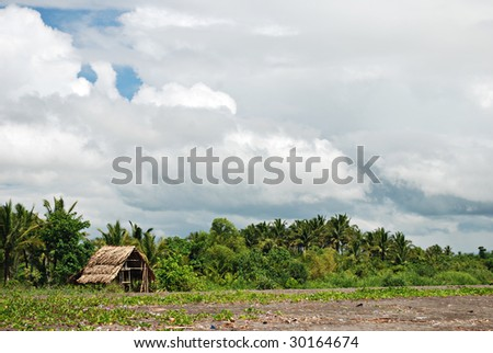 huts on the beach essay