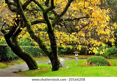 Nitobe Memorial Garden UBC Vancouver Stock Photo (Edit Now ...