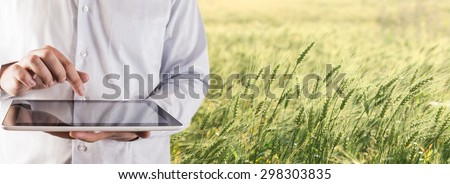 No face person Businessman hold tablet touch pad computer Botanic scientist man wear shirt Copy space for inscription Experienced agronomist examining wheat grain in field Takes readings Agribusiness - stock photo