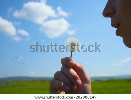 No face Unrecognizable person Boy or girl blowing dandelion Seed fly in air against blue sky with clouds Sunny summer day Idea of windy good weather and easiness Spring season flower - stock photo