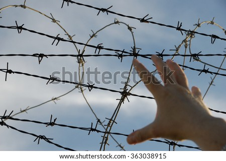 No more barriers and barbed wire - stock photo
