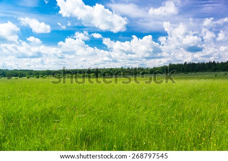 Nobody Outside Field Freedom  - stock photo