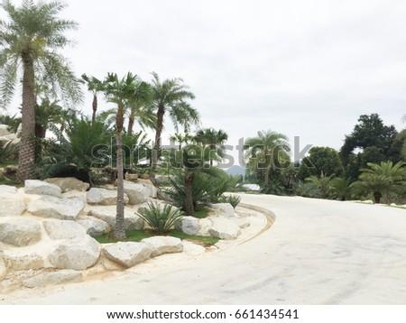 nong nooch tropical garden in pattaya thailand asia 5 december 2016 - Tropical Garden 2016