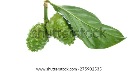 Noni fruits on white background. - stock photo