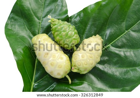 Noni fruits with leaf on white background