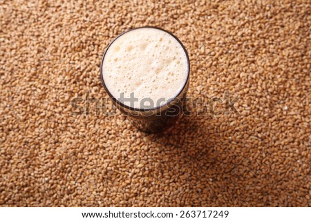 Nonic pint glass of dark stout beer over malted barley grains - stock photo