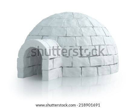 Nordic landscape with igloo - stock photo