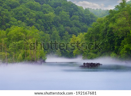 Norris Dam State Park fog on the river - stock photo